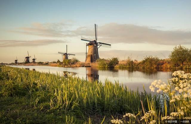 荷兰多少人口_2010 2019年荷兰人口数量及人口性别 年龄 城乡结构分析