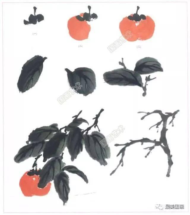 囹.+yie�)�9b&_写意柿子画法教程,名家写意柿子技法赏析,国画柿子的画法步骤