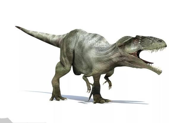 恐龙世界_领驭 恐龙世界