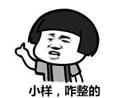 东北话骂人表情包:滚犊子,你是不是彪,你这损色找削啊图片