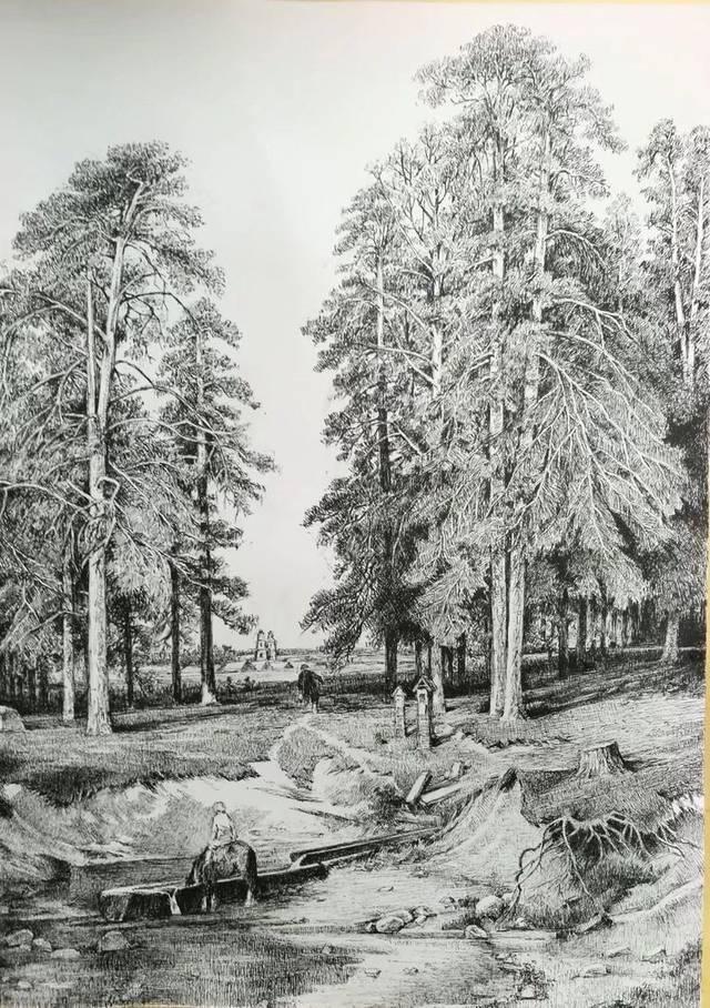 钢笔画《耶拉布加附近圣洁的春天》(根据希施金的油画创作) 中文