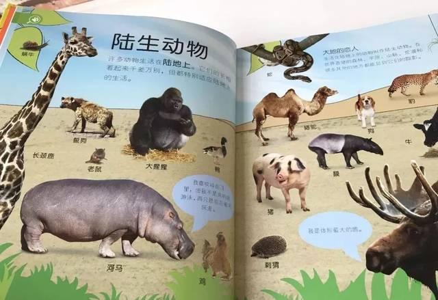 人和动物生的孩子_虽然是科普绘本,但却通过一个个动物各方面的不同描述,告诉了孩子