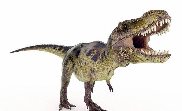 史前的巨型鳄鱼,体长12米以上,咬合力比霸王龙强两倍