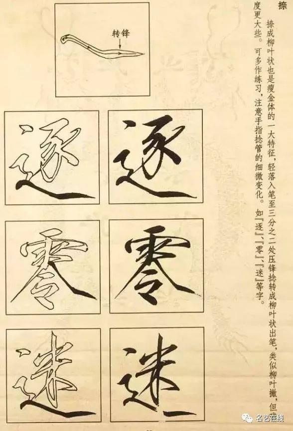 呈柳叶状,轻入笔至三分之二处,压锋捻转出笔,注意手指捻管的细微变化.图片