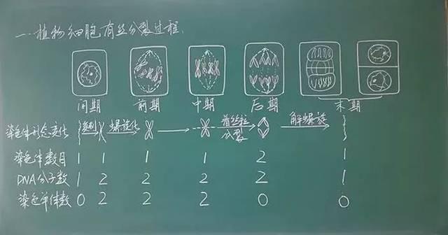 和其他老师不同,历史老师的板书里,总带有岁月的厚重感图片