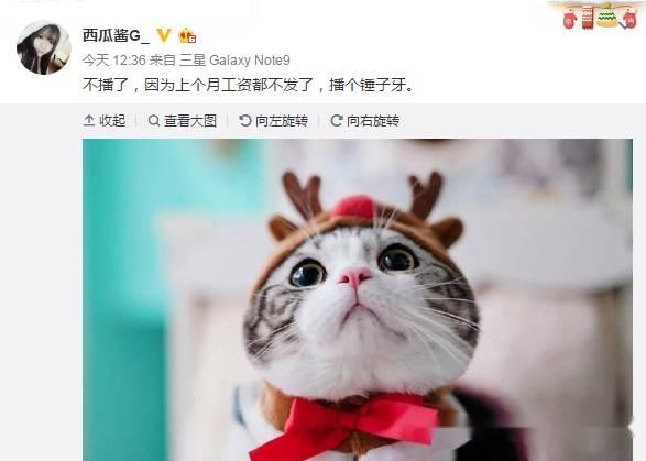 杏耀娱乐:斗鱼签约主播西瓜酱宣布暂停直播
