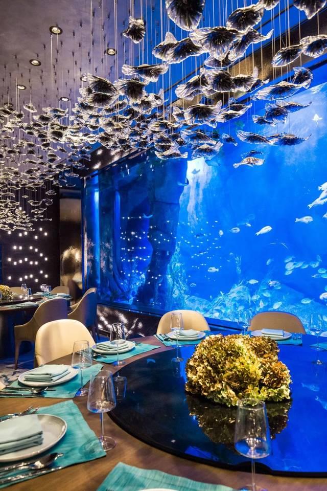 揭秘上海首家水下餐廳,我們去地下15層和6000條魚吃了