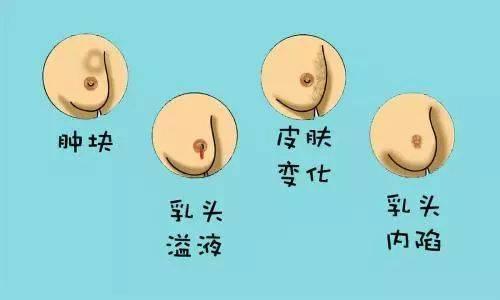 吸乳头插逼逼图_看什么: a,乳头轮廓:外形是否正常,大小是否对成; b,乳头:是否在同一
