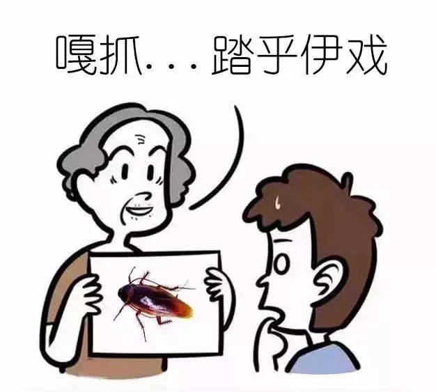 快来测试你的闽南语是什么段位吧图片