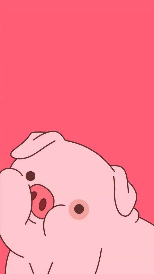 可爱小猪头像壁纸 猪小屁壁纸 2019好运壁纸