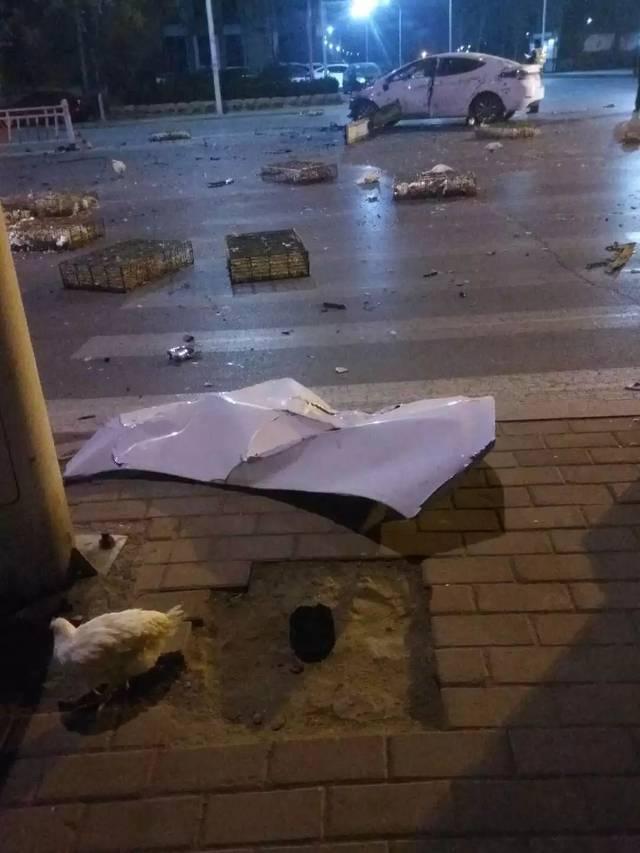 濮阳发生惨烈车祸,车头报废,满地都是活鸡!图片