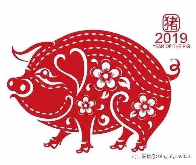 「剪纸作品」2019年新年剪纸小猪作品集锦(收藏版)