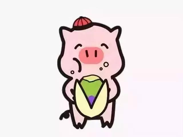 承包你的新年微信社交 憨态可掬的卡通小猪 新年送祝福 让你的祝福脱图片