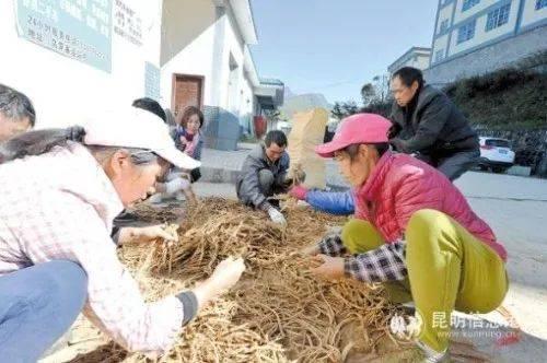 http://www.kmshsm.com/caijingfenxi/31075.html
