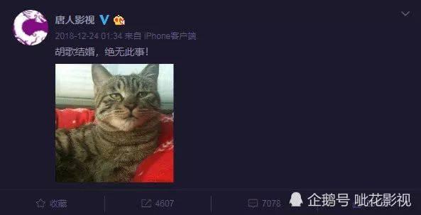 胡歌正式公开恋情微博再度沦陷杨幂:再续前缘
