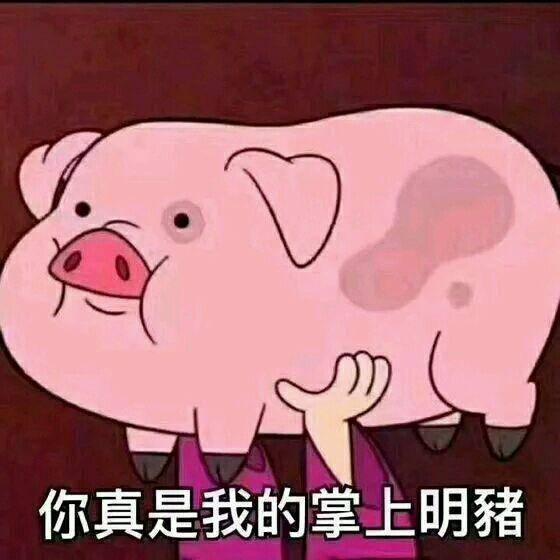 死猪不怕开水烫,越到深夜哥越浪 你才是猪,老子是天蓬元帅 图片来自图片