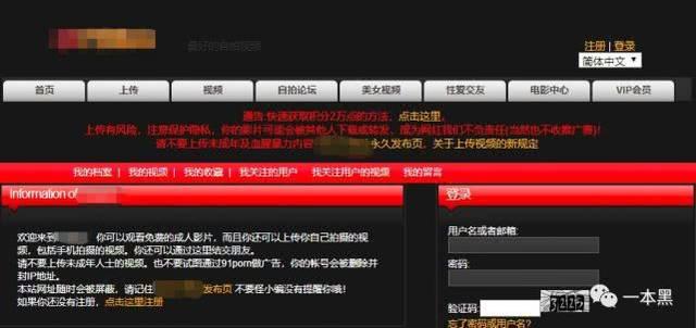自拍情色视频网址_不少国外色情网站以此为噱头,鼓励用户上传自拍视频.