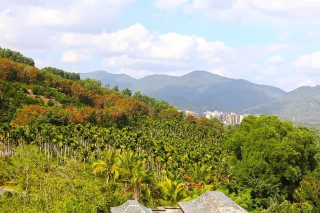 那香山:独【墅】一帜的度假方式,悠然四季,雨林时光图片