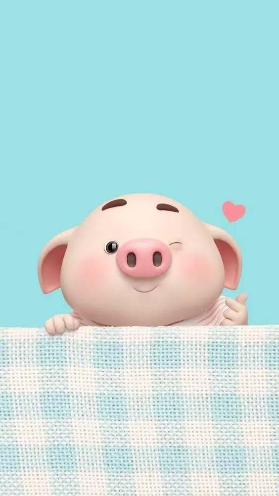大年三十,百头萌猪给您拜年啦!2019开心每一天!