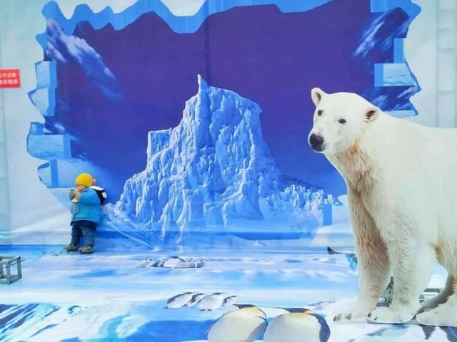 雅安首届冰雪节开幕啦,没去现场的看过来,游玩攻略全披露!图片