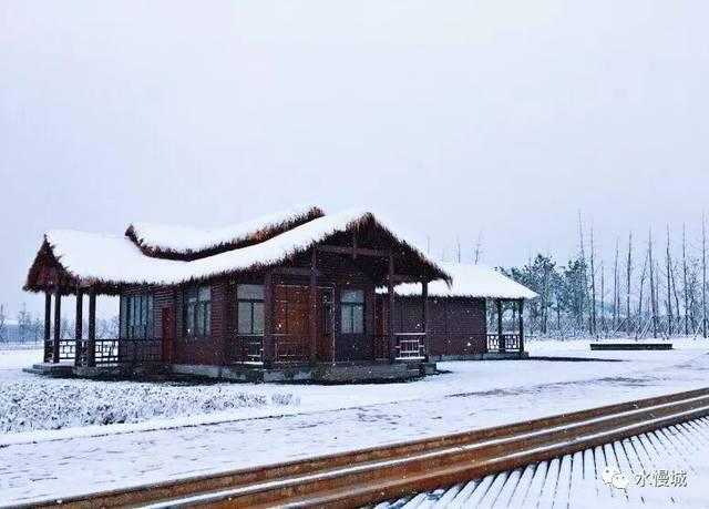 ??_柳絮一般的雪, 蘆花一般的雪, 羽毛一般的雪, 在天空中縹縹緲緲, 轉