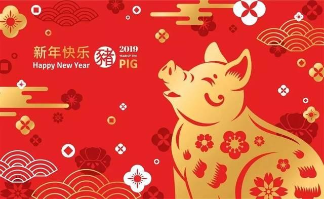 祝大家2019猪年大吉大利,感谢一路有你们图片