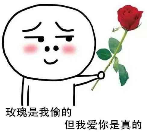 我爱你表情包:玫瑰是我偷的,但我爱你是真的