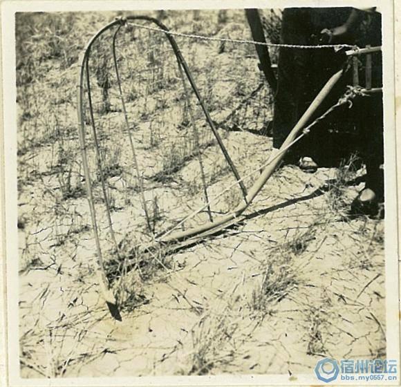 首次曝光!80年前日军侵略宿州(宿县,砀山,灵璧)照片合辑!