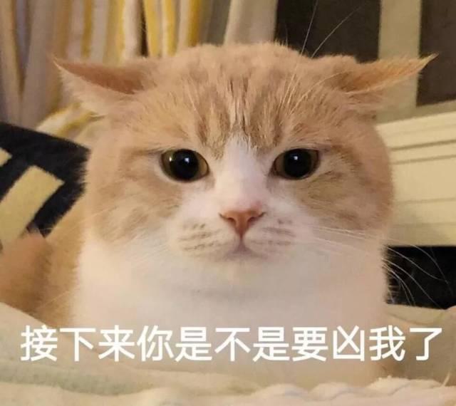 表情包:你表情包太多,不想和你聊了图片