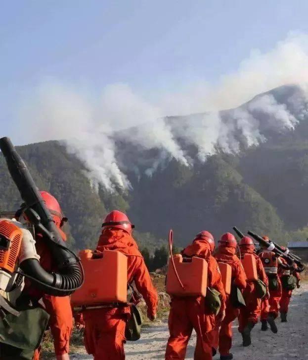 据初步分析,此次木里森林火灾可能是雷击造成.图片