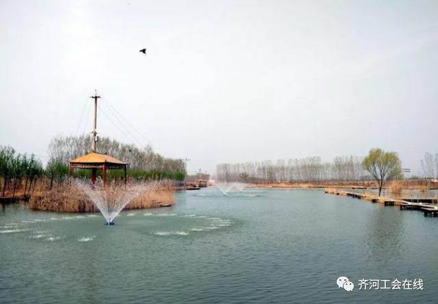 一幅关于美丽齐河的_这个四月,我们相约大美齐河!