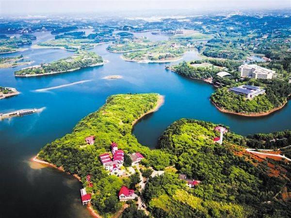 成都龙泉山城市森林公园图片
