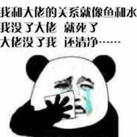 熊猫头委屈表情包:你讲话好冷漠,好像我不曾让我开心过一样图片