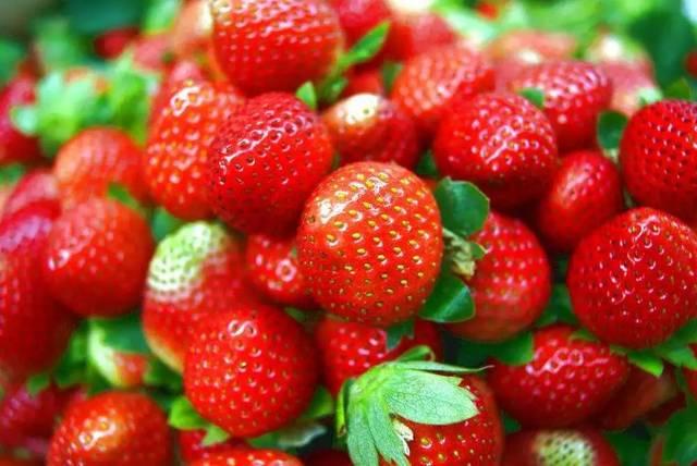 孕妇梦见买甘蔗和草莓