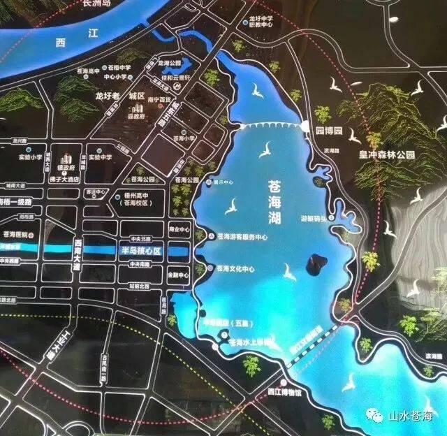 龙圩苍海新区规划图