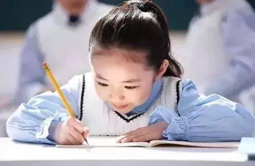 亚洲幼幼文学_创想·暑期幼小衔接班,让孩子在创想浓厚的阅读和文学氛围中顺利从