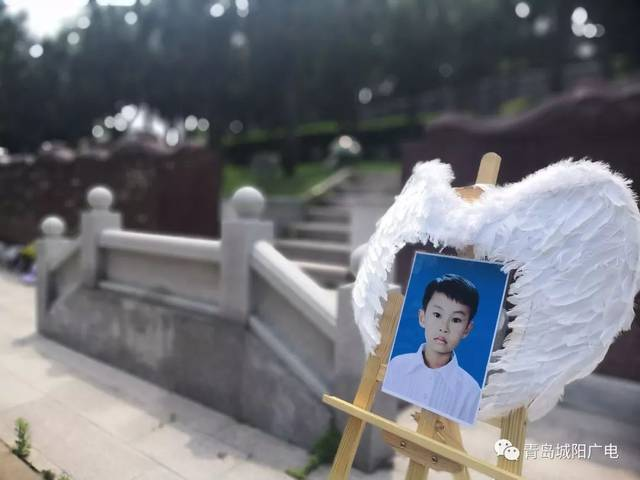 感动人间!青岛城阳小男孩患病去世,他捐献的器官救了5个家庭