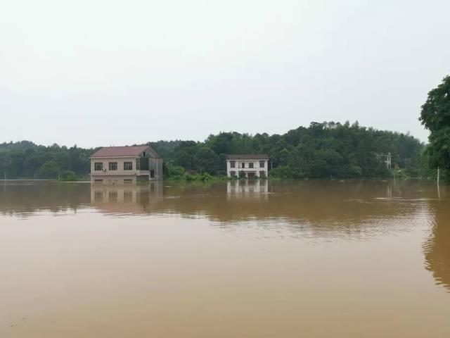 湖南醴陵市现50年一遇重大洪灾,