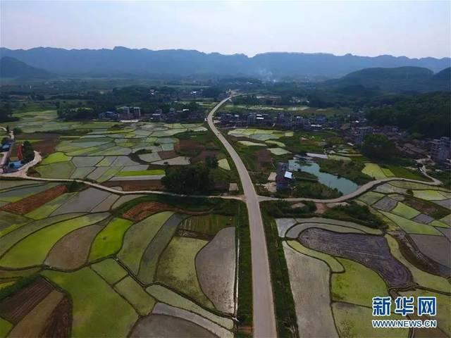 南宁南湖公园2000多深圳市1979高中图片