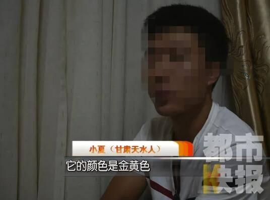 http://www.vribl.com/shenghuojia/578553.html