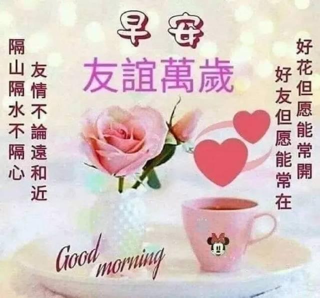 最美早上好动态图片表情带字和鲜花,早安问候语配动态图片