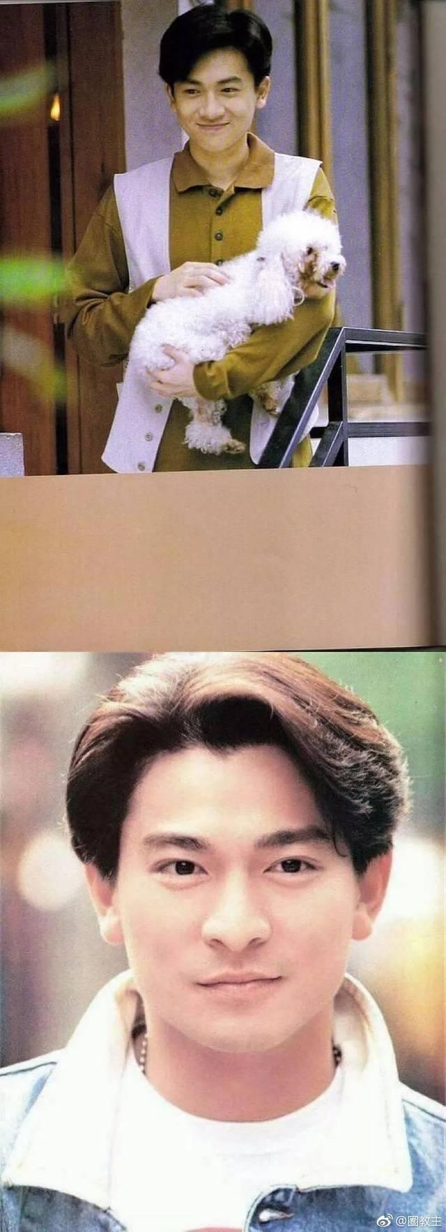 90年代港臺男明星幾乎都留過這個發型,感覺又斯文又清爽,還顯得發量巨圖片