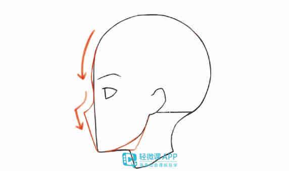 4,从鼻子上添加下颚部分,在眉毛和鼻子之间添加.图片