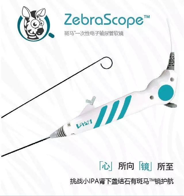 中国梦之声斑马下载_以梦为马,斑马一次性电子输尿管软镜发布会