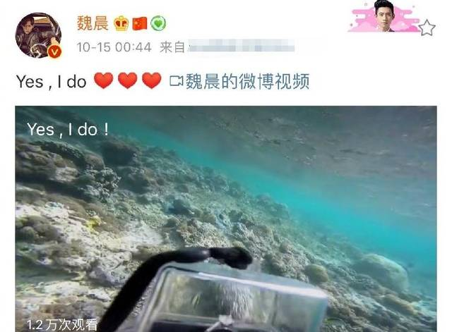 魏晨成功求婚 在水下手持钻戒游向女友