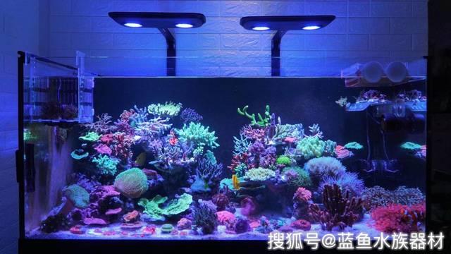鱼缸增氧泵的使用方法及注意事项图片