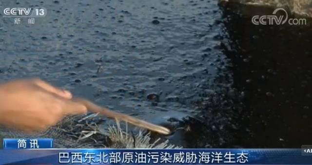 新闻资讯_汝行集团—新闻资讯