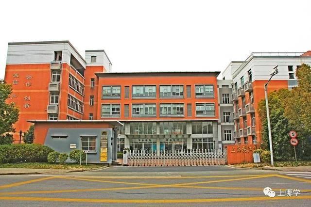 上海3所特殊民办!招收化学班,对口这些地段!常见化学方程式小区初中图片