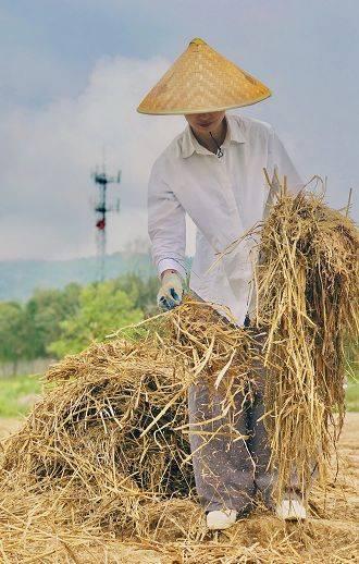 中青报报道铜陵生姜创业返乡打造石蜡文化品牌青年加玉米油图片