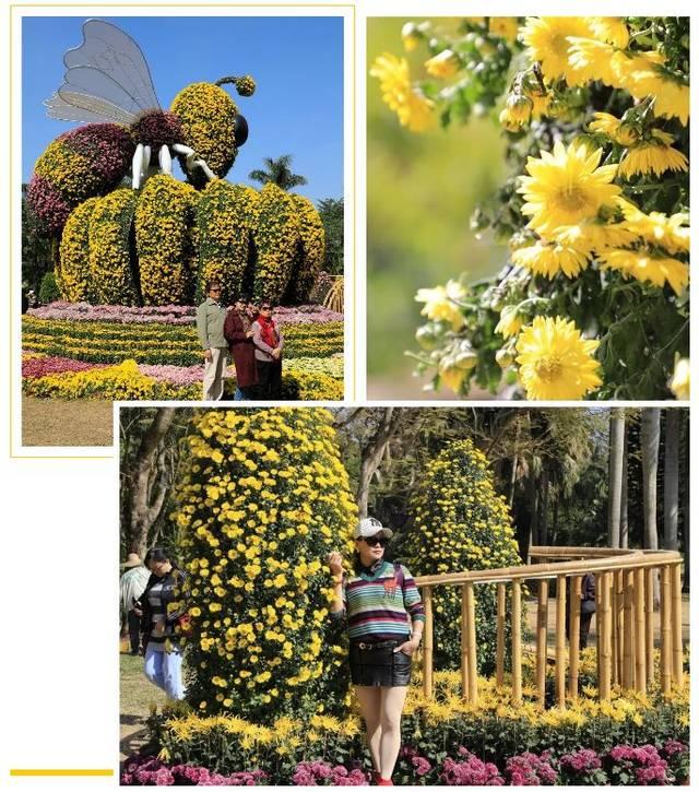 """以猴子采菊蕊为主蜜蜂钩织了童话般梦幻的蜜蜂""""小场景""""身上的""""花怎么展现小造型图片"""
